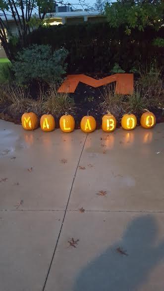 """""""Malaboo"""" 2016"""