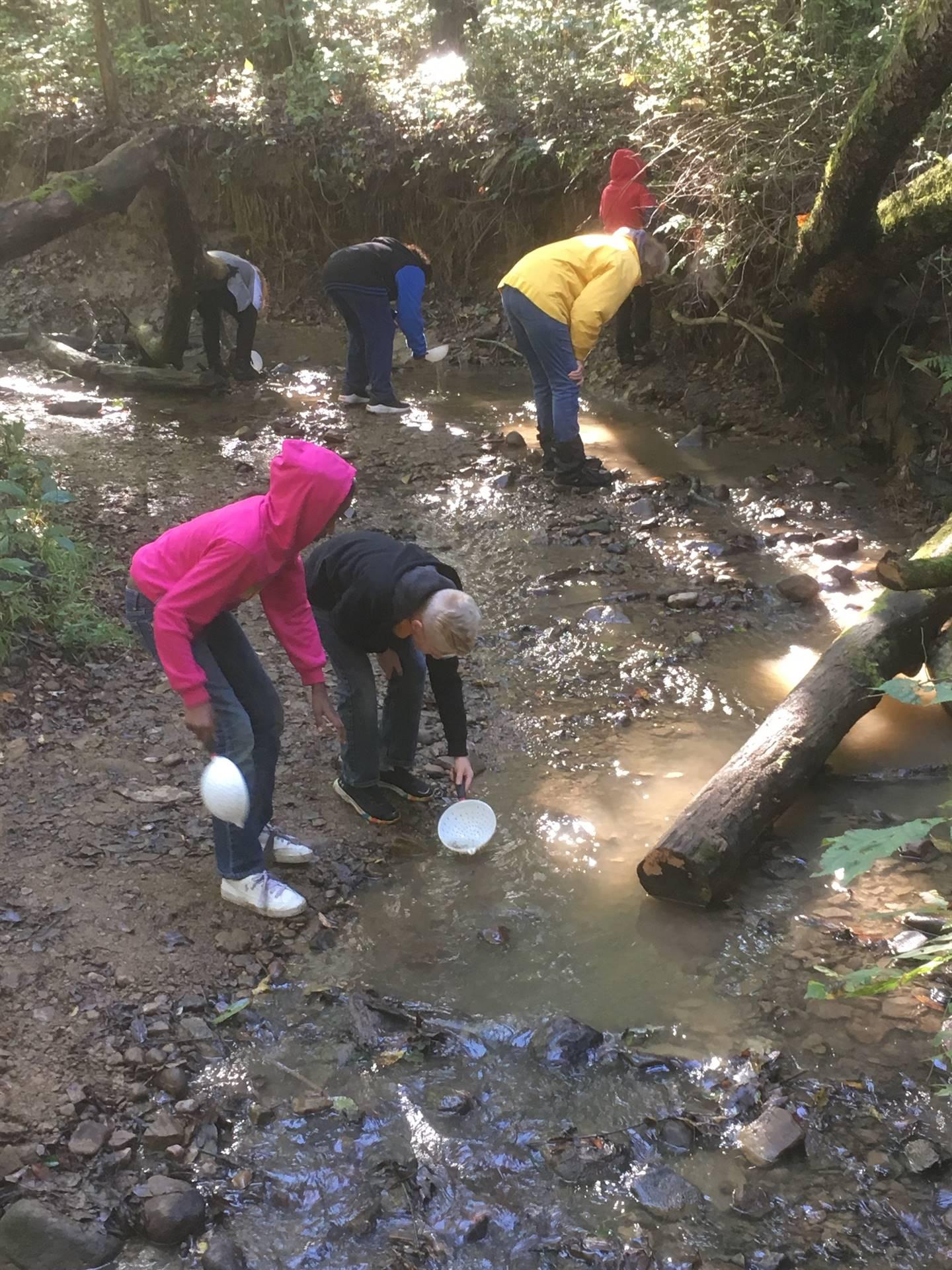 5th Grade Nature Studies Hemlock Falls