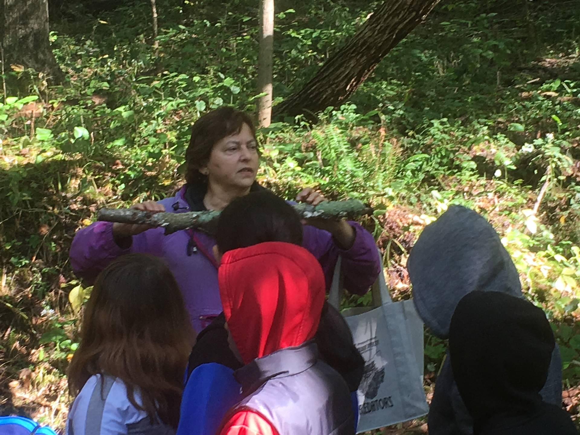 Nature Studies at Hemlock Falls with 5th Grade