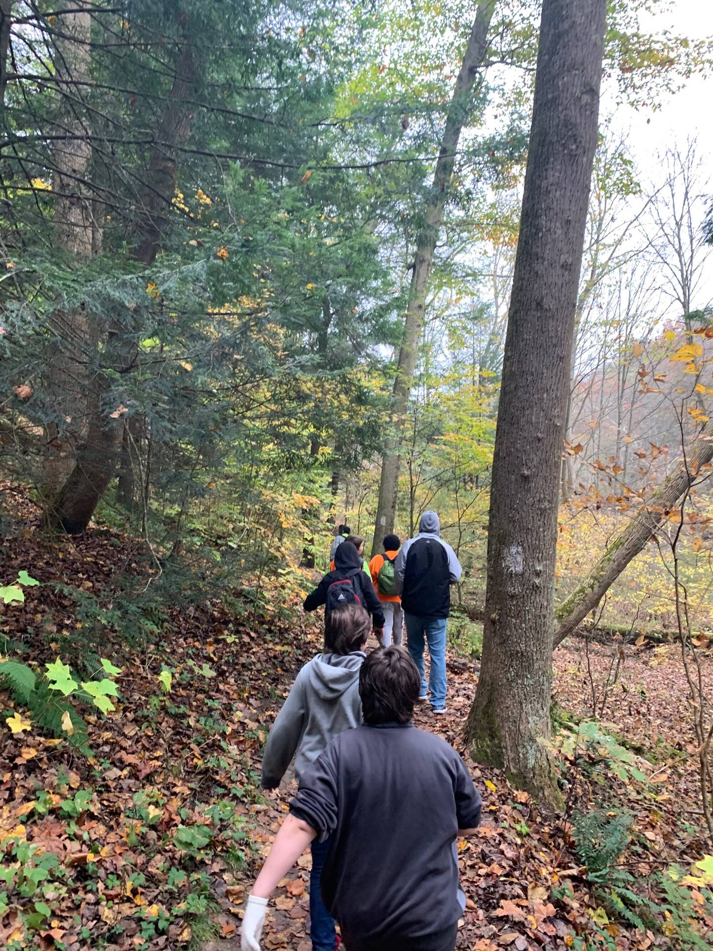 More of Mohican Trip with Mr. Rapp's Class
