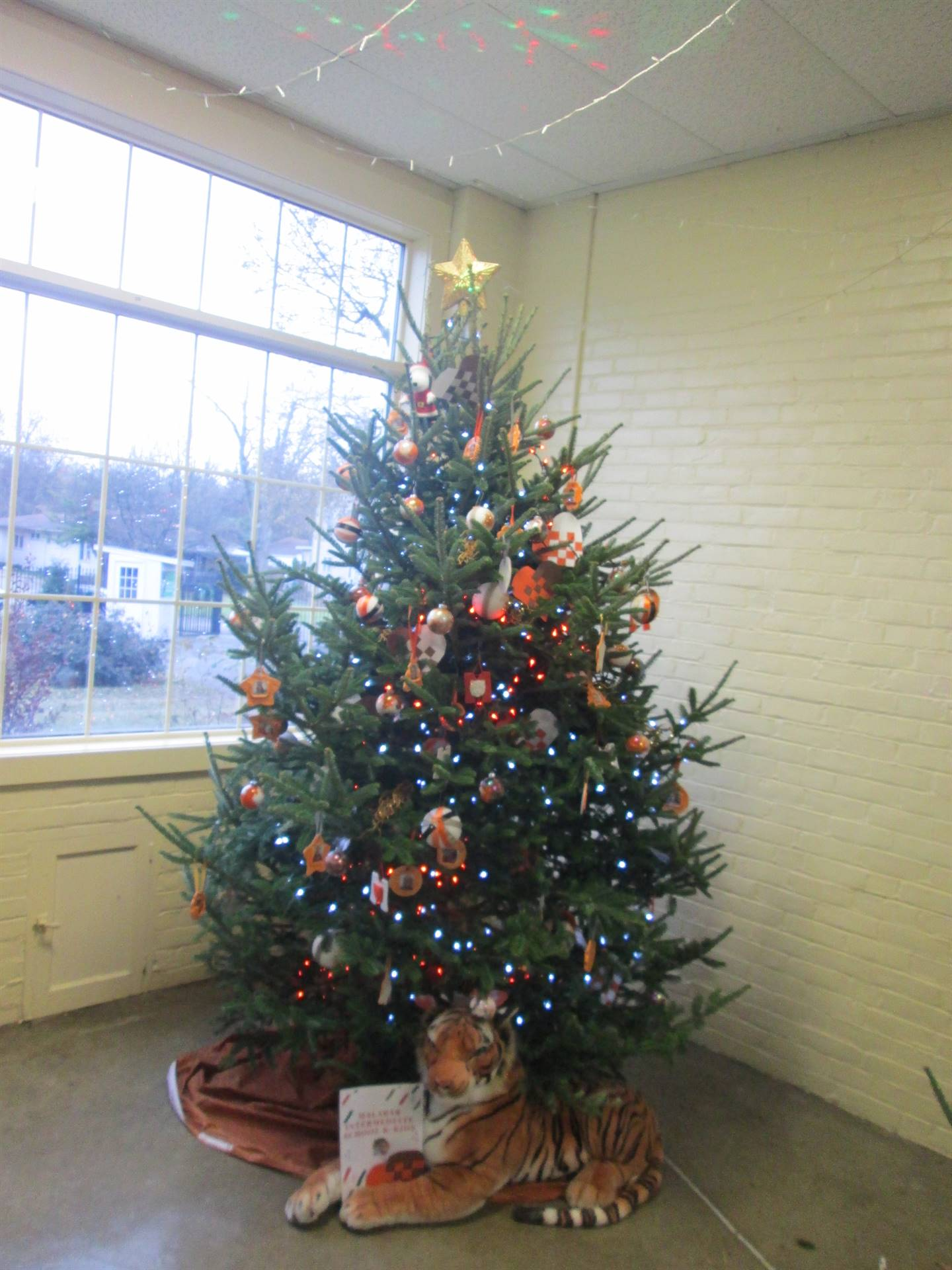 Malabar Tree @ Kingwood, Thanks you K-Kids & Ms. Mewhinney & Mrs. Sweat!!
